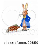 Clipart Illustration Of A Gardening Bunny Rabbit Standing By A Wheel Barrow Full Of Carrots