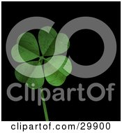 3d Green Textured Four Leaf Clover On A Long Stem Over A Black Background