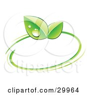 Clipart Illustration Of A Pre Made Logo Of Green Dew Covered Leaves And A Circle by beboy #COLLC29964-0058