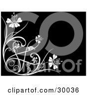 Clipart Illustration Of A White Flourish Of Vines And Flowers Over A Black Background by KJ Pargeter