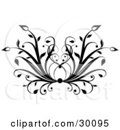 Clipart Illustration Of A Floral Black Flourish Of Grasses