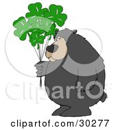 Clipart Illustration Of A Big Bear Standing And Holding A Bunch Of Green Clover St Patricks Day Balloons by djart