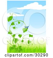 Clipart Illustration Of A Blue Butterfly Perched On A Lush Green Vine On A Sunny Spring Day by elaineitalia