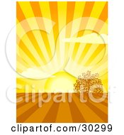 Bright Yellow Sun Shining Rays Over Cultivated Farm Land With One Tree
