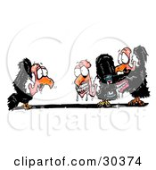 Clipart Illustration Of A Shocked Vulture Watching His Friends Wearing And Applying Dentures by Spanky Art