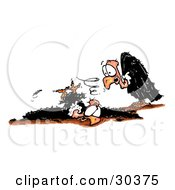Clipart Illustration Of A Clumsy Vulture Crashing While Trying To Land Embarrassing Himself In Front Of His Friend