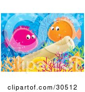 Poster, Art Print Of Orange And Purple Puffer Blowfishes Swimming Above A Sunken Cannon And Treasure