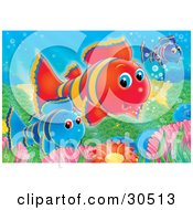 Clipart Illustration Of Blue Red And Purple Clownfish Swimming Over Anemones On A Reef by Alex Bannykh