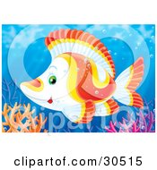 Poster, Art Print Of White Yellow And Orange Tropical Fish Swimming Over Colorful Reef Corals