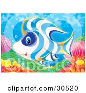 Clipart Illustration Of A White Blue And Orange Tropical Fish Swimming Over Corals And Anemones On A Reef by Alex Bannykh