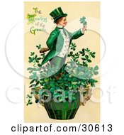 Vintage Victorian St Patricks Day Scene Of A Leprechaun Or Isirh Man Standing In A Pot Of Shamrocks Holding A Clover Circa 1910