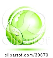 Clipart Illustration Of A Dewy Green Vine Circling Around A Shiny Green Orb