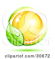 Clipart Illustration Of A Dewy Green Vine Circling Around A Shiny Orange Orb