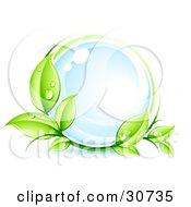 Green Organic Dewy Vine Circling A Glassy Blue Orb
