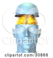 Clipart Illustration Of A 3d Rendered Head Opening Up To Display A Golden Brain