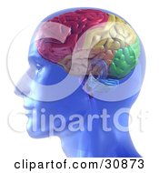 Clipart Illustration Of A 3d Rendered Transparent Blue Man With A Colorful Brain
