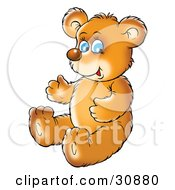 Clipart Illustration Of A Cute Blue Eyed Bear Cub Sitting On The Floor And Smiling