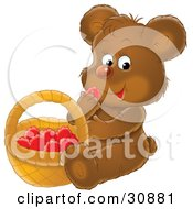 Hungry Brown Bear Cub Sitting And Eating Red Berries From A Basket