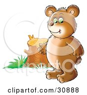 Clipart Illustration Of A Chubby Bear Cub Standing By A Tree Stump Symbolizing Deforestation And Loss Of Habitat