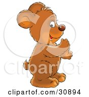 Clipart Illustration Of A Clapping Bear Cub