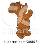Clipart Illustration Of A Happy Bear Cub Dancing And Having Fun