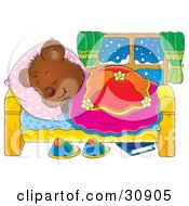 Bear Cub Hibernating In A Comfortable Bed And Sleeping On A Snowy Winter Night