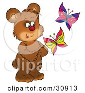 Happy Bear Cub Watching Two Colorful Butterflies