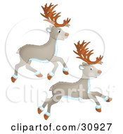 Clipart Illustration Of Two Caribou Or Reindeer Running by Alex Bannykh