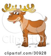 Clipart Illustration Of A Male Deer With Antlers Standing In Profile And Smiling by Alex Bannykh