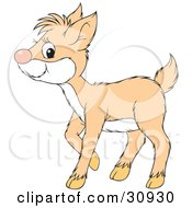 Clipart Illustration Of A Pale Deer Fawn With A White Belly by Alex Bannykh
