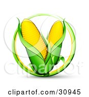 Green And Yellow Circle Around Two Ears Of Corn