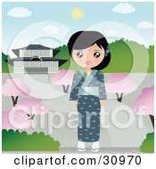 Pretty Japanese Woman Wearing A Blue Kimono And Slippers Standing On A Path In A Park With Blossoming Trees