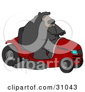 Clipart Illustration Of A Big Bear Driving A Red Riding Lawn Mower