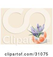 Clipart Illustration Of Purple Crocus Flowers Growing Inside An Orange Egg Shell On A Pastel Orange Background by Eugene #COLLC31075-0054