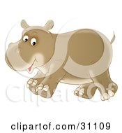 Happy Brown Baby Hippopotamus Running And Smiling