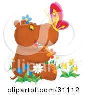 Cute Brown Baby Hippo With A Butterfly On His Nose Sitting In A Bed Of Colorful Spring Flowers Tulips And Daisies