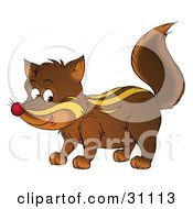 Clipart Illustration Of A Brown Baby Badger With White Stripes And A Red Nose by Alex Bannykh