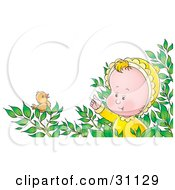 Clipart Illustration Of A Curious Baby In A Bush Watching A Little Bird