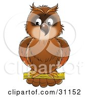 Clipart Illustration Of A Perched Brown Owl Looking Off To The Left by Alex Bannykh