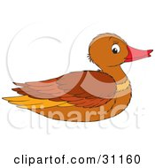 Clipart Illustration Of A Brown Female Mallard Duck In Profile
