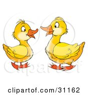 Clipart Illustration Of Two Yellow Geese Talking And Facing Each Other