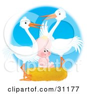 Clipart Illustration Of Two White Storks Standing Over A Cute Human Baby In A Nest by Alex Bannykh