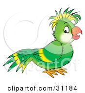 Clipart Illustration Of A Friendly Green Parrot With Yellow Lines On His Wing And Head Feathers