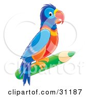 Clipart Illustration Of A Colorful Parrot Perched On A Green Colored Pencil