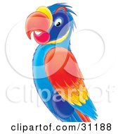 Clipart Illustration Of A Colorful Blue Red Orange And Yellow Parrot by Alex Bannykh