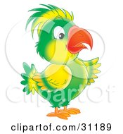 Clipart Illustration Of A Green And Yellow Parrot With A Bright Orange Beak by Alex Bannykh