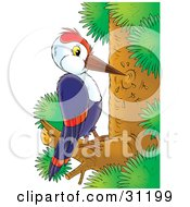 Blue Woodpecker With White And Red Markings Pecking At A Tree