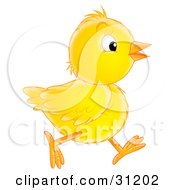 Clipart Illustration Of A Yellow Baby Chick Running In Profile