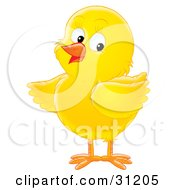 Clipart Illustration Of An Adorable Yellow Chick Looking Back by Alex Bannykh #COLLC31205-0056