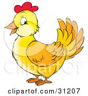 Clipart Illustration Of A Friendly Yellow Chicken Hen With Red On Her Head